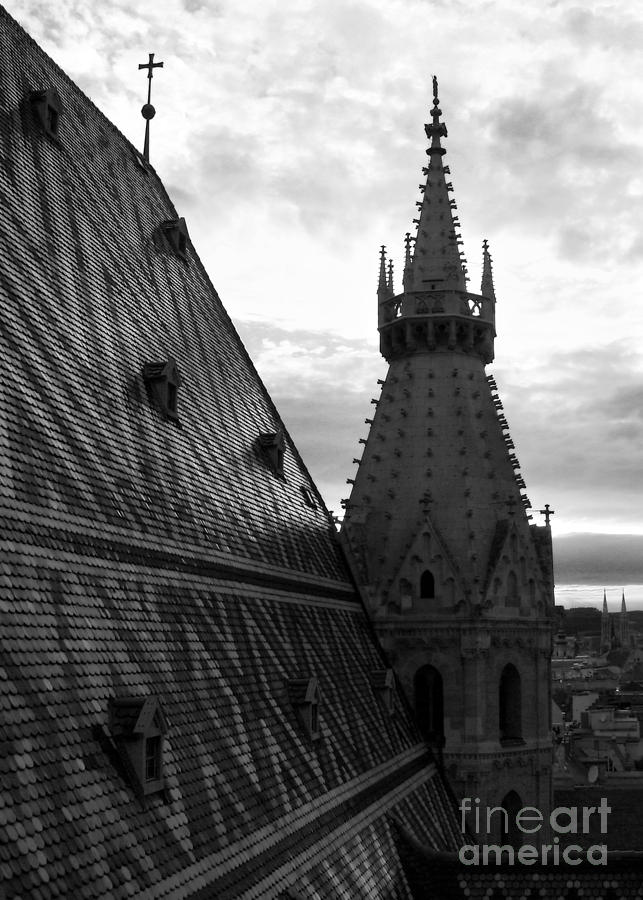 Architecture photograph st stephens cathedral vienna in black and white by angela rath