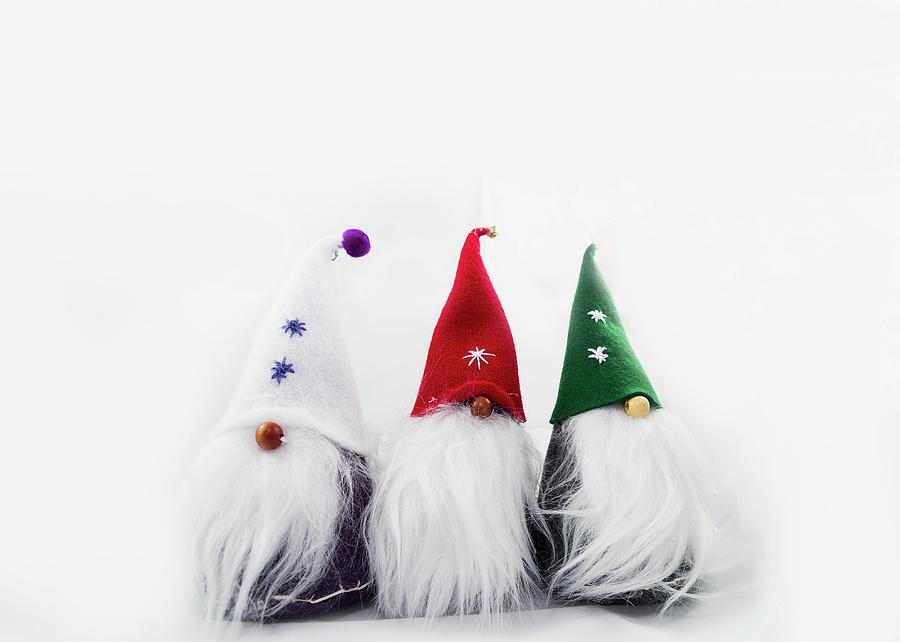 Three Gnomes 2a Photograph