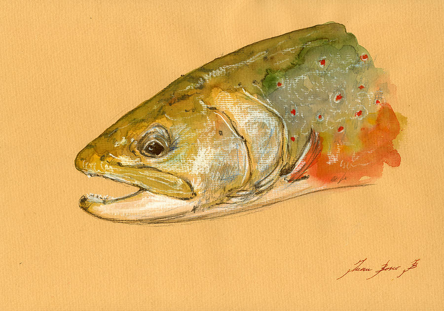 Trout Watercolor Painting - Trout Watercolor Painting by Juan  Bosco