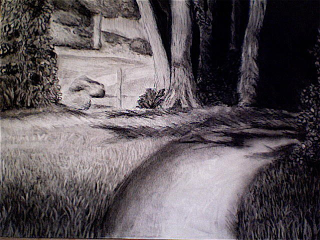 Landscape Drawing - Untitled by Mary-Selvi Ingoldsby