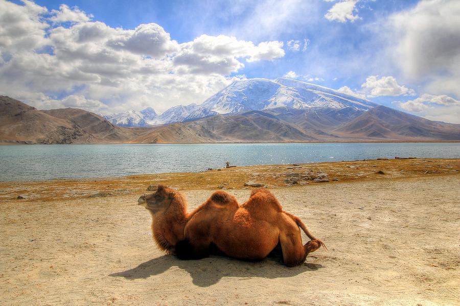 Xinjiang Province China Photograph by Paul James Bannerman