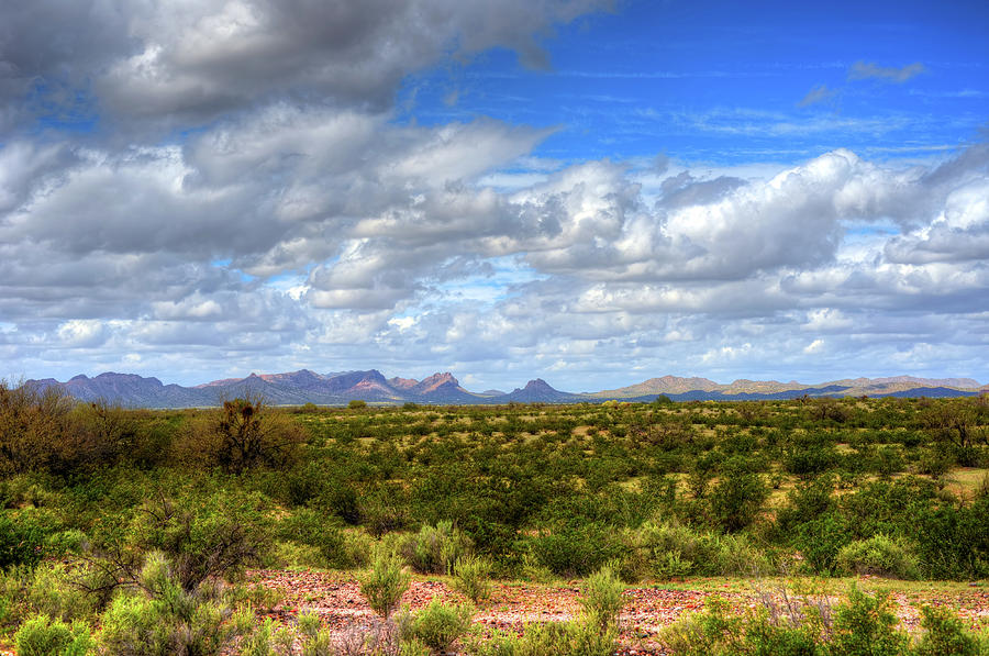 Sonora Photograph - Sonora Desert by Paul Moore