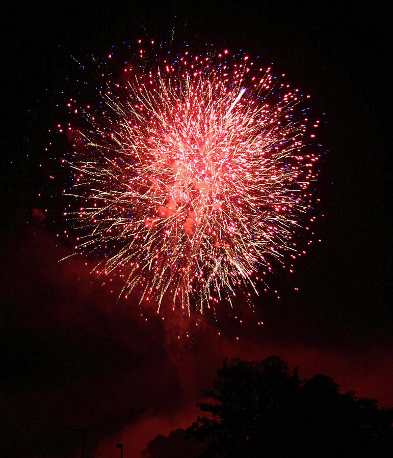 4th of July by Shirley Roberson