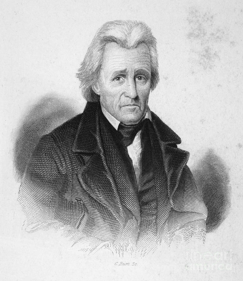 19th Century Photograph - Andrew Jackson (1767-1845) by Granger