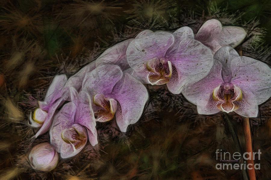 Flower Painting - 5 Dollar Orchid by Deborah Benoit
