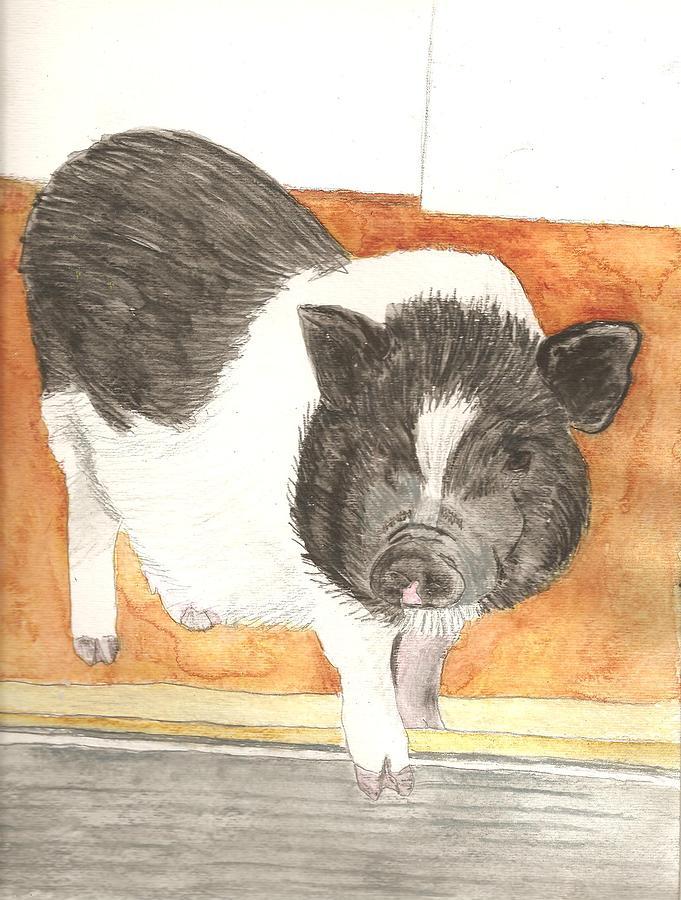 Portrait Painting - Pet Portrait Original Watercolor By Pigatopia by Shannon Ivins
