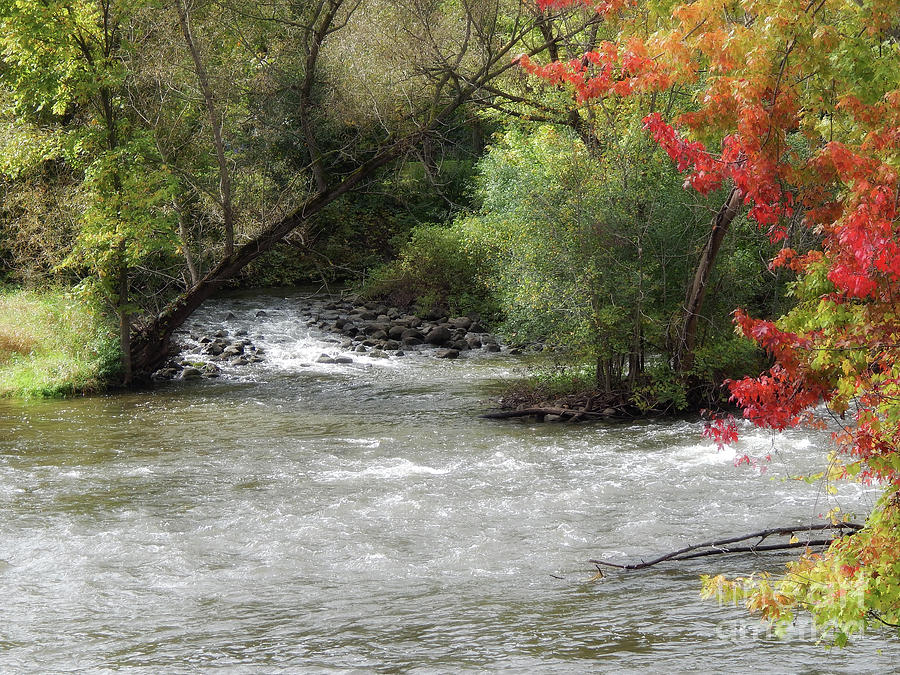 Huron River Photograph - The Huron River by Phil Perkins