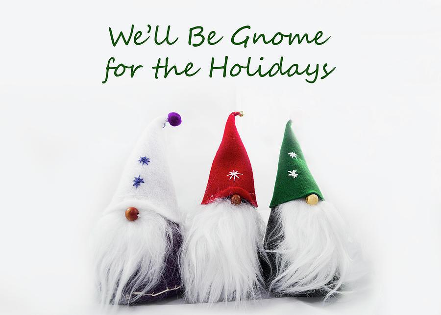 Three Holiday Gnomes 2a Photograph