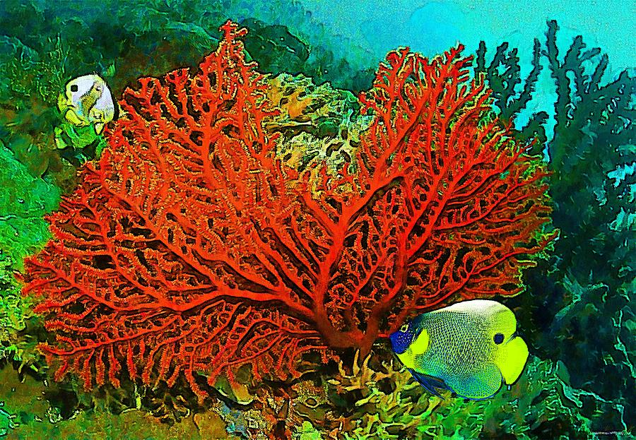 Underwater. Coral reef. Digital Art by Elena Kosvincheva