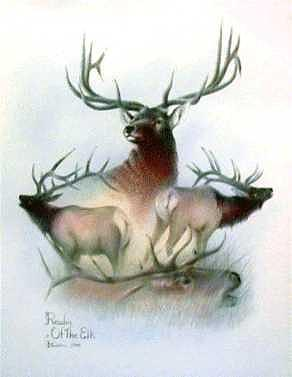 Realm Of The Elk Mixed Media by Bill Cullum