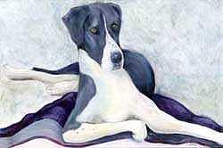 Great Dane Painting - Gabby by Cherri Lamarr