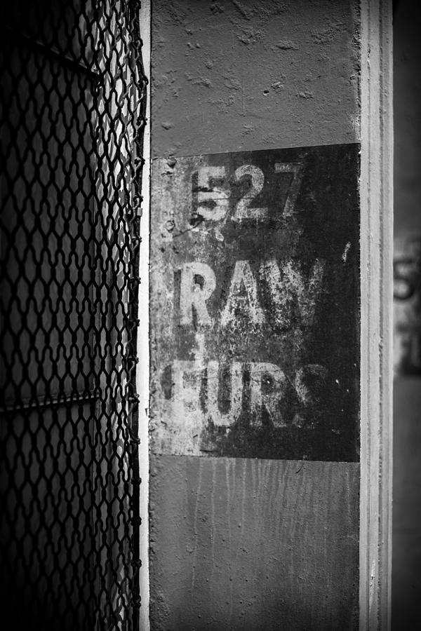 Big Easy Photograph - 527 Raw Furs by Giovanni Arroyo