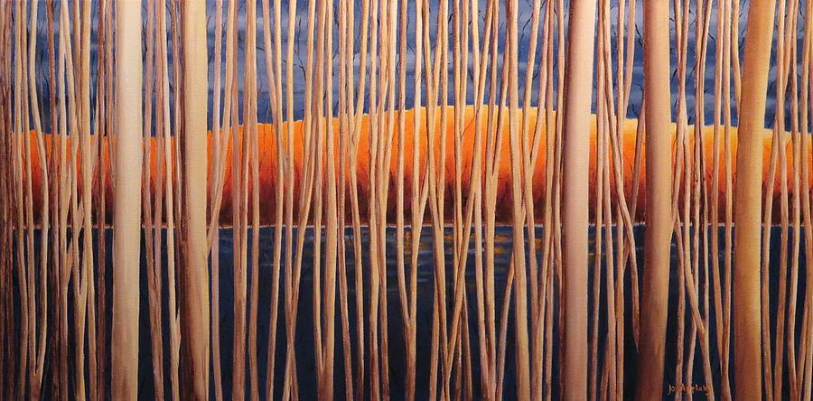 54 Trees by Jo Appleby