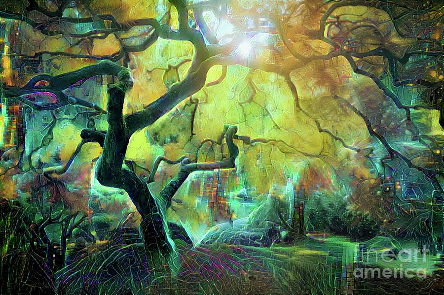 Abstract Digital Art - 6 Abstract Japanese Maple Tree by Amy Cicconi