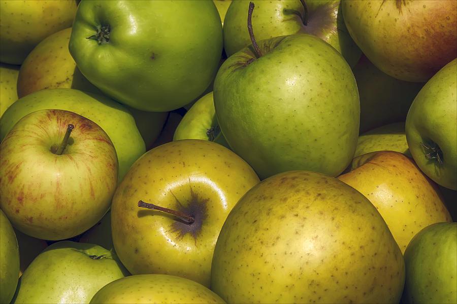 Apples Photograph - Apples by Robert Ullmann