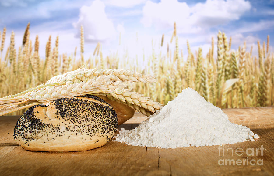 Agriculture Photograph - Bread And Wheat Cereal Crops by Deyan Georgiev