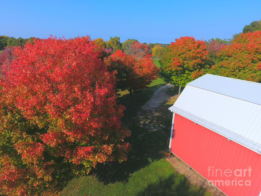 Trees Photograph - Farming by Timeless Aerial Photography LLC
