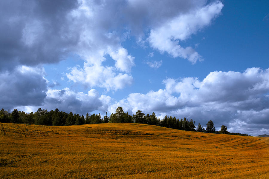 Blue Clean Clear Clouds Color Colorful Country Field Flora Freed Photograph - Mountain Farm by Mark Smith