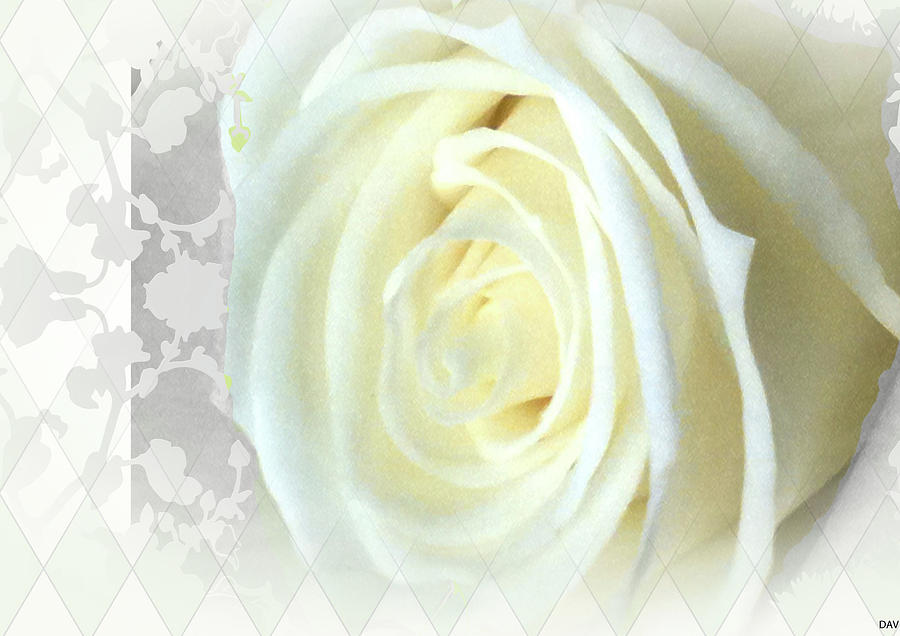 Wedding Card Collection Photograph - Wedding Rose Collection  by Debra     Vatalaro