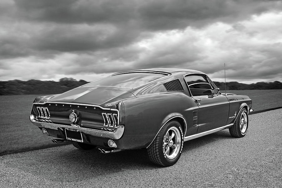 67 Fastback Mustang in Black and White by Gill Billington