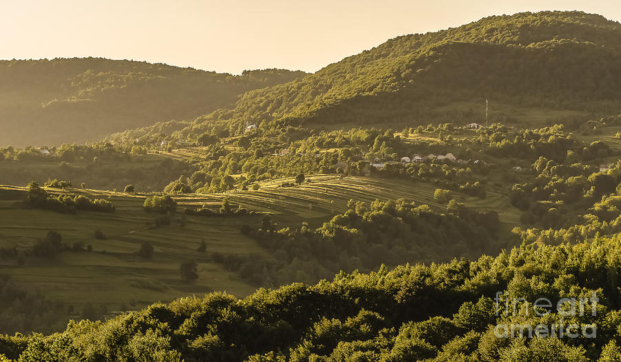 Carpathian Photograph - Sunny Transcarpathia by Lyudmila Prokopenko