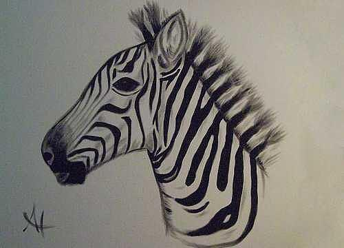 Zebra Painting - Z-bra by Al Borrego