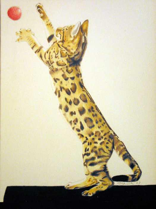 Animals Painting - Pet Impressions-cat With Ball by Kyle Adamache