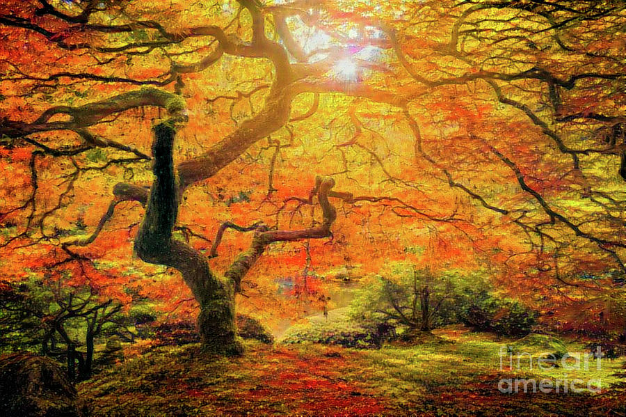 Abstract Digital Art - 7 Abstract Japanese Maple Tree by Amy Cicconi