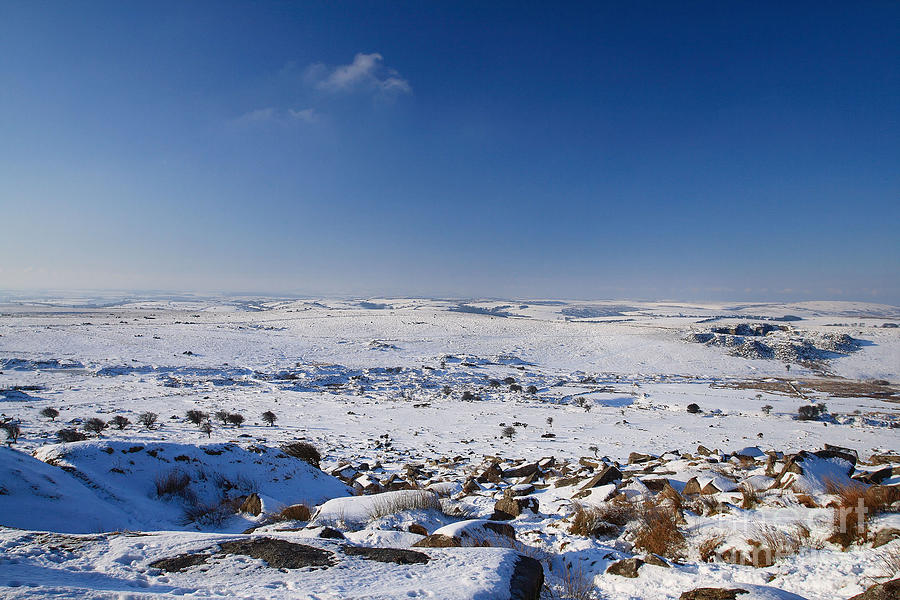 Bodmin Moor Photograph - Bodmin Moor by Carl Whitfield
