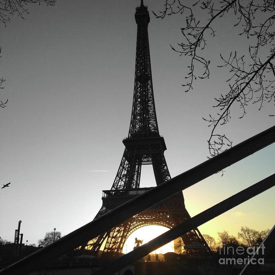 Eiffel tower paris gold on black and white color splash