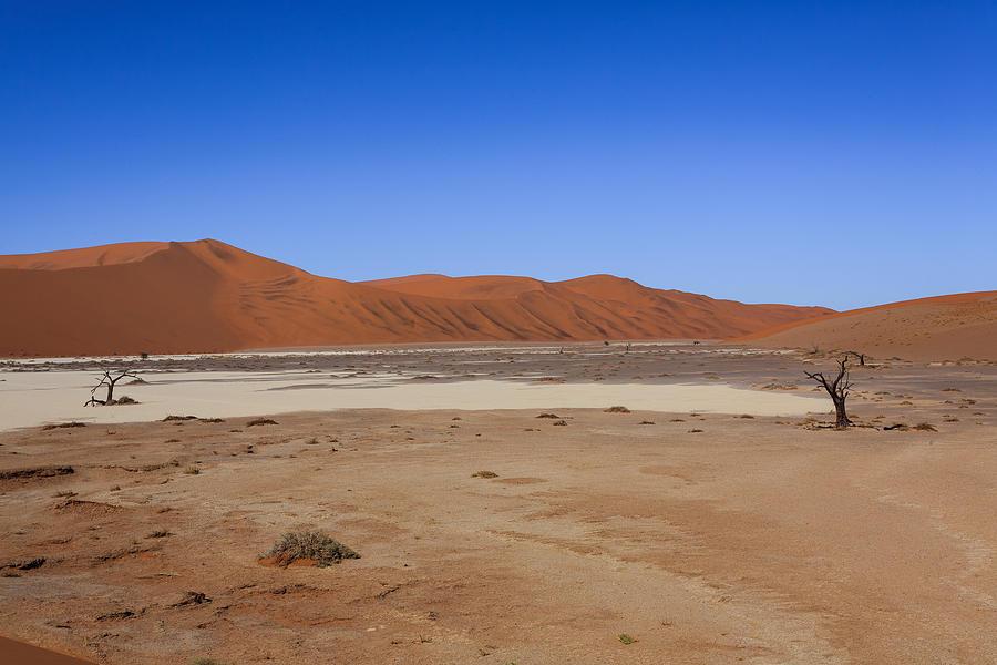 Kalahari Photograph - Hidden Vlei by Davide Guidolin
