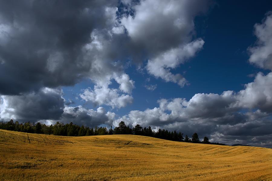 Mountain Farm Photograph by Mark Smith