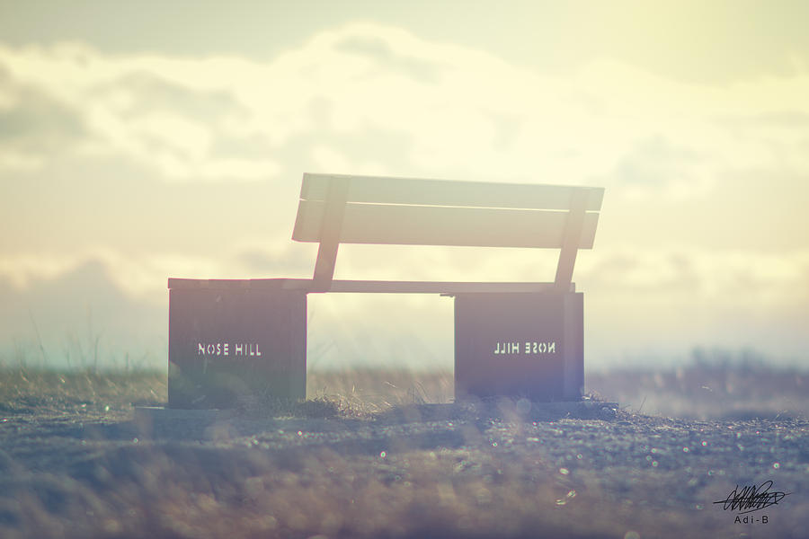 Bench Digital Art - Nose Hill Park by Adnan Bhatti