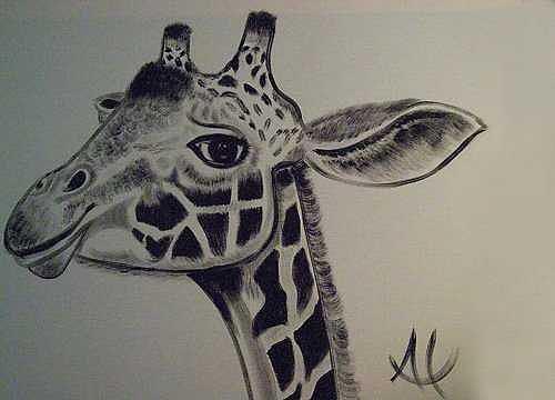 Giraffe Painting - G-raf by Al Borrego
