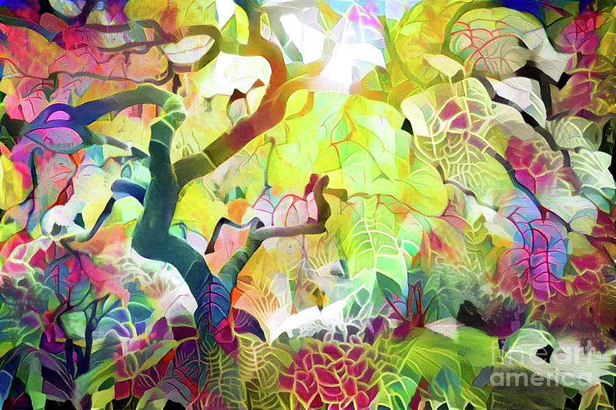 Abstract Digital Art - 8 Abstract Japanese Maple Tree by Amy Cicconi
