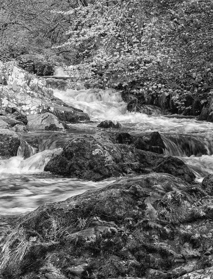 Aira Force Photograph - Aira Force by Paul Cullen