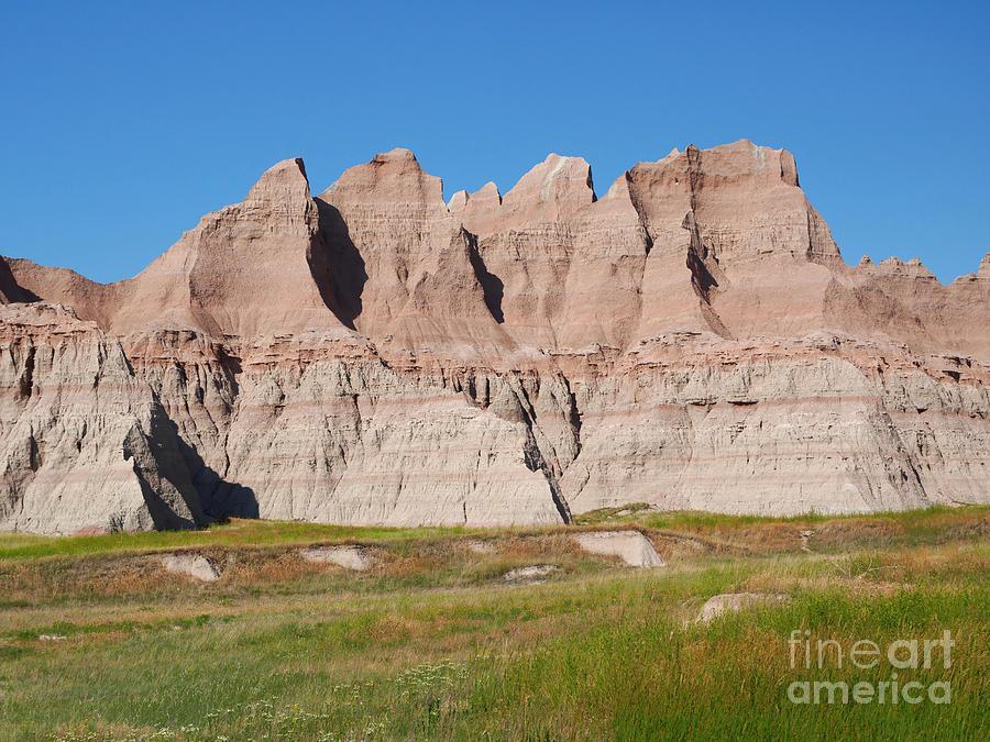 Vegetation Photograph - Badlands National Park South Dakota by Louise Heusinkveld