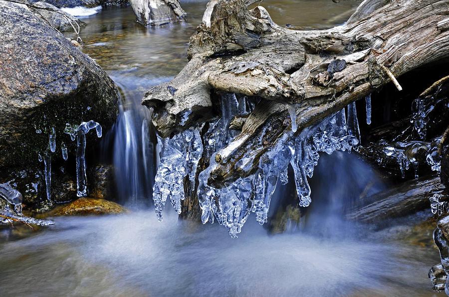 Creek Photograph - Creek by John Anderson