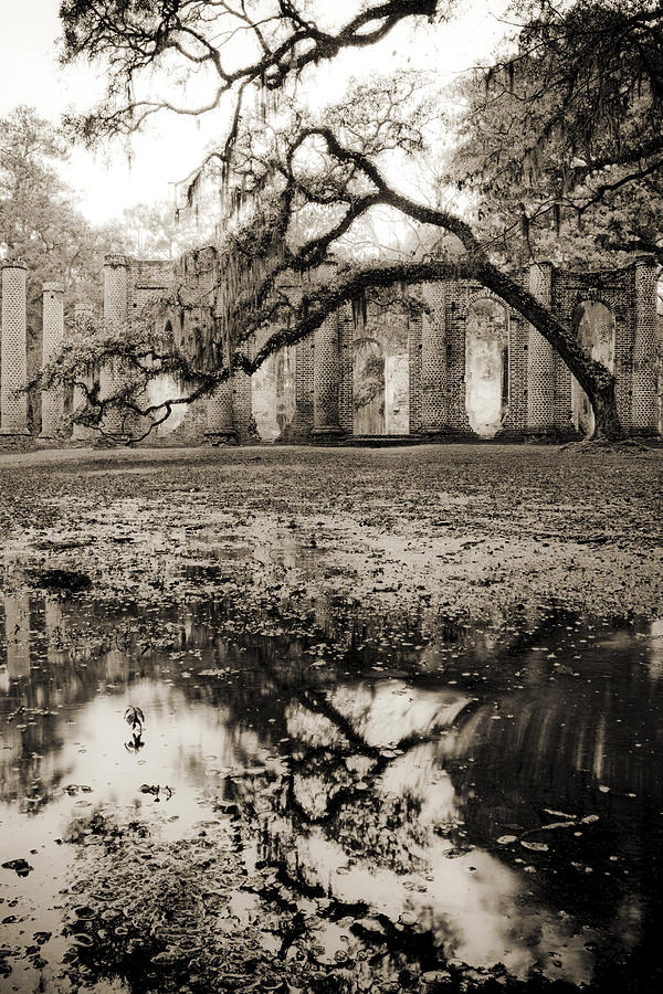 Ruins Photograph - Old Sheldon Church Ruins by Dustin K Ryan