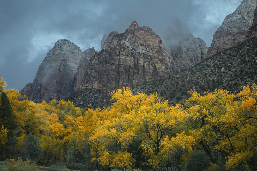 Zion Autumn Photograph