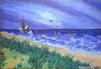 Seagull At Manzanita Beach Print by Tanna Lee Wells