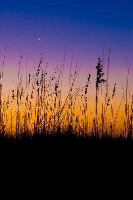 Sunrise Photograph - The Beginning by Robert Hill