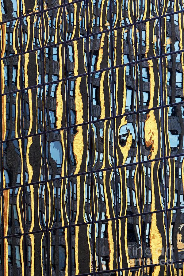Abstract Reflection by Tony Cordoza