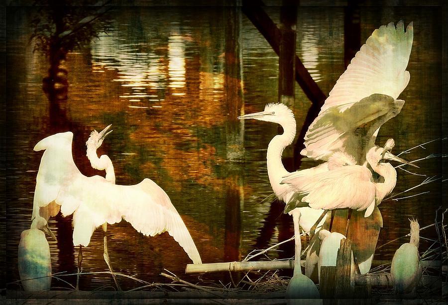 9 Egrets by Leslie Revels
