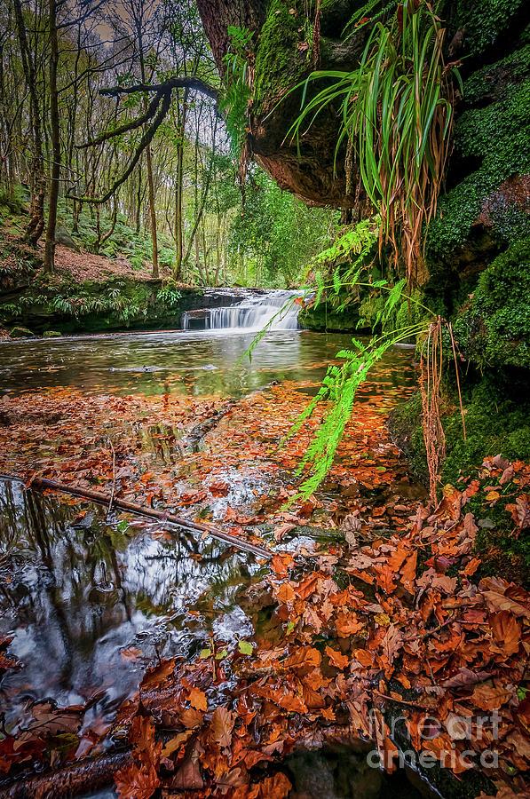 Waterfall Photograph - Harden Beck by Mariusz Talarek
