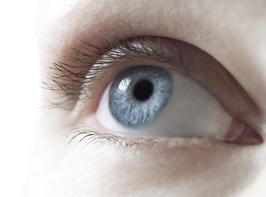 White Background Photograph - Womans Eye by