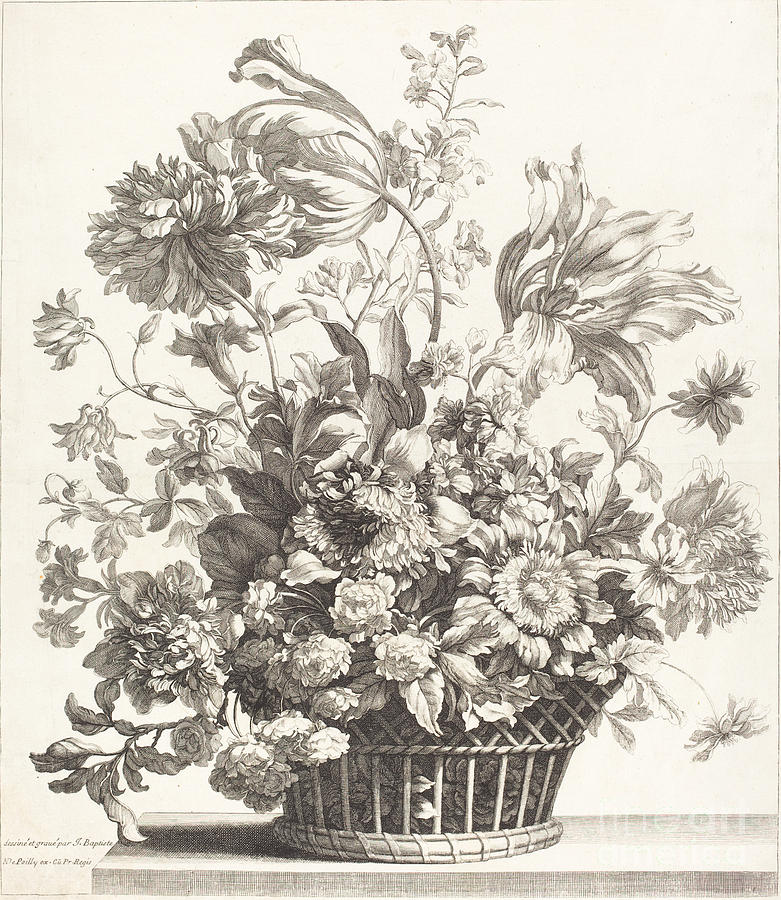 A Basket Of Spring Flowers Drawing By Jean Baptiste Monnoyer