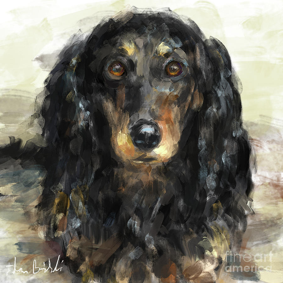 Dachshund Digital Art - A Beautiful Artistic Painting Of A Dachshund  by Idan Badishi