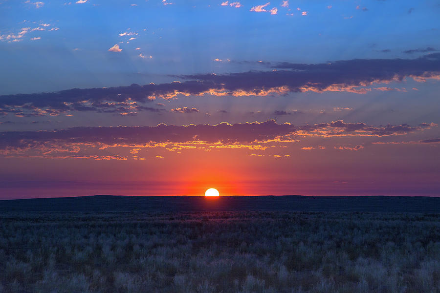 A Beautiful Desert Morning by Amy Sorvillo