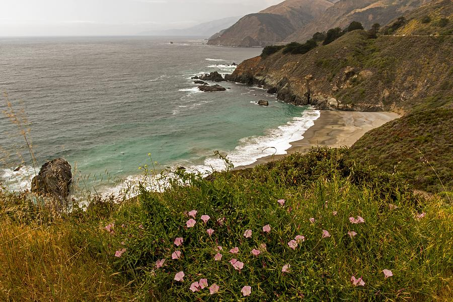 A Beautiful View Of The Pch by Willie Harper